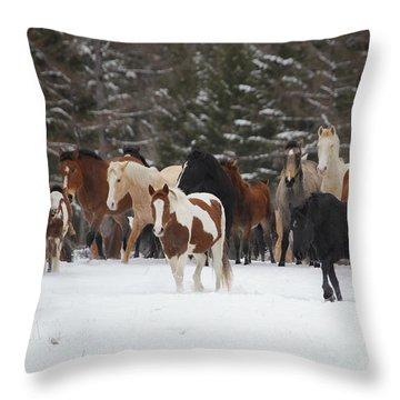 Montana Herd Throw Pillow
