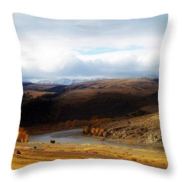 Montana Throw Pillow