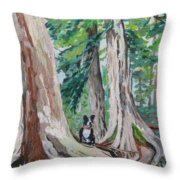 Monty's Travels Throw Pillow