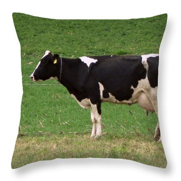 Throw Pillow featuring the photograph Moo by Joseph Skompski