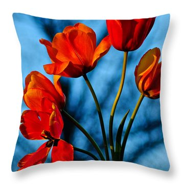 Mood Bouquet Throw Pillow by Frozen in Time Fine Art Photography