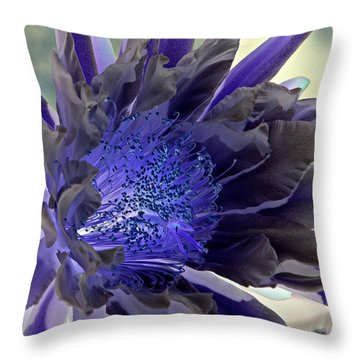 Throw Pillow featuring the photograph Moody Blues by Antonia Citrino