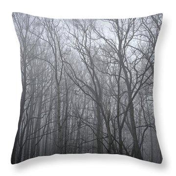 Moody Outlook Throw Pillow