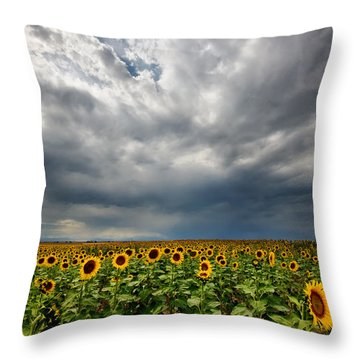 Throw Pillow featuring the photograph Moody Skies Over The Sunflower Fields by Ronda Kimbrow