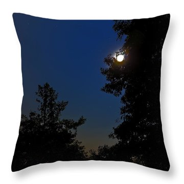 Throw Pillow featuring the photograph Moon And Pegasus by Greg Reed