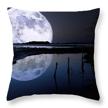 Moon At Night Throw Pillow