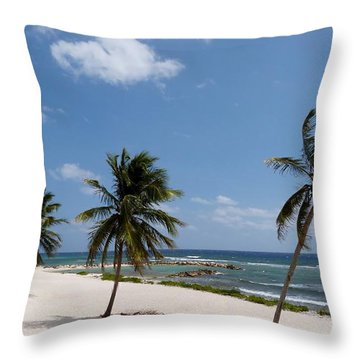 Throw Pillow featuring the photograph Moon Bay by Amar Sheow