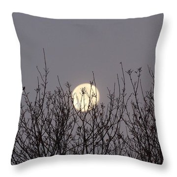 Moon Fall Throw Pillow