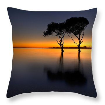 Moon Over Mangrove Trees Throw Pillow