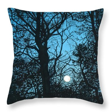 Moon Over Pittsburgh Throw Pillow by Barbara Jewell
