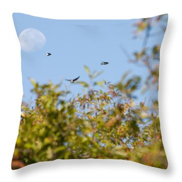 Moon Over The Dunes Throw Pillow