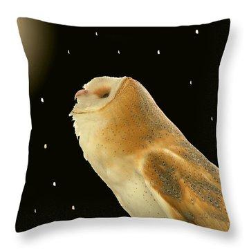 Moon Owl Throw Pillow