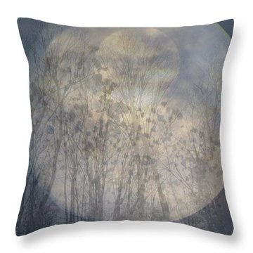 Moon Shadow Throw Pillow by France Laliberte