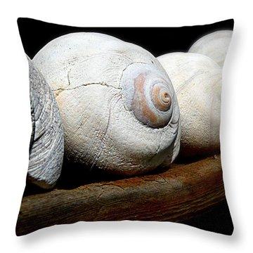 Moon Shells Throw Pillow by Micki Findlay
