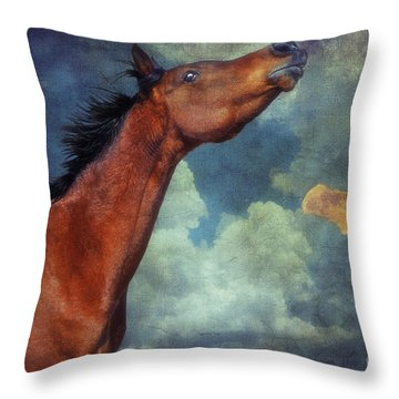 Throw Pillow featuring the photograph Moon Song by Karen Slagle