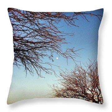 Moon Trees Throw Pillow