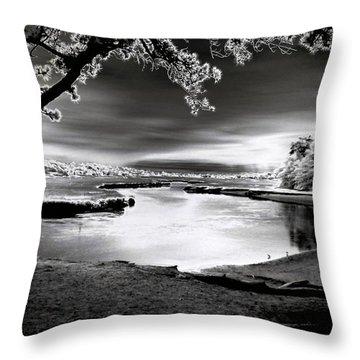 Throw Pillow featuring the photograph Moona Lagoona by Robert McCubbin