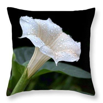 Moonflower - Rain Drops Throw Pillow by Nikolyn McDonald