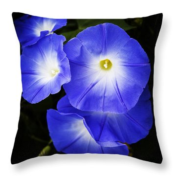 Moonglow On Blue Throw Pillow