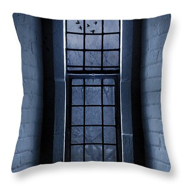 Moonlight Throw Pillow by Dale Kincaid