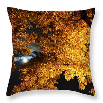 Moonlight Throw Pillow by Dan Stone