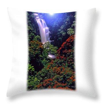 Moonlight Falls Throw Pillow
