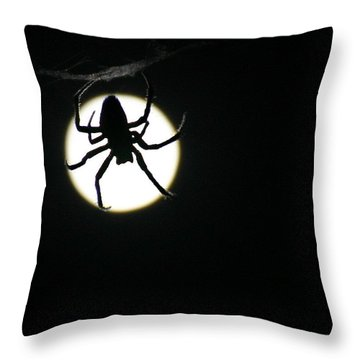Throw Pillow featuring the photograph Moonlight Hunter by Christopher McKenzie
