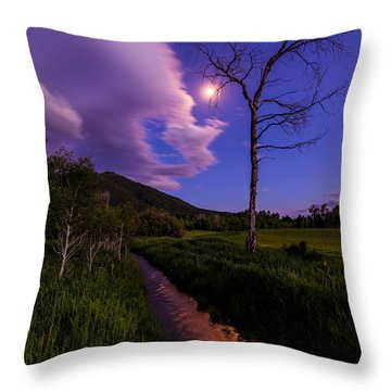 Moonlight Meadow Throw Pillow