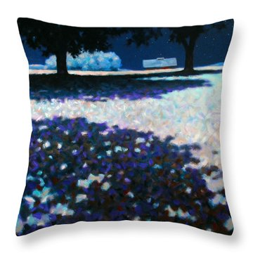 Moonlit Acres Throw Pillow