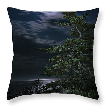 Moonlit Treescape Throw Pillow by Marty Saccone