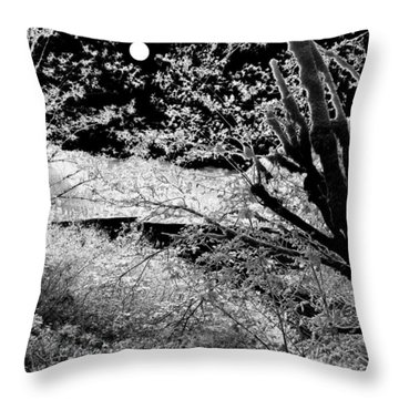 Moonlit Unforecasted Frost Throw Pillow