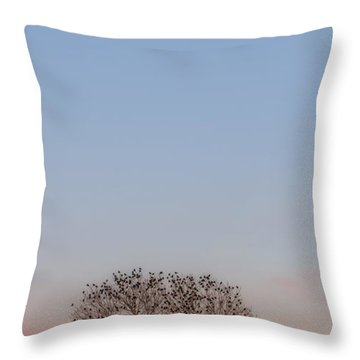 Moonrise Over Blackbirds Throw Pillow by Rob Graham