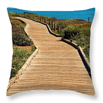 Moonstone Beach Park By Diana Sainz Throw Pillow