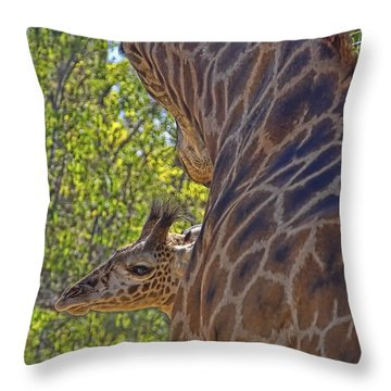 Throw Pillow featuring the photograph Mooom Im Bored by Gary Holmes