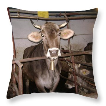 Mooooo Throw Pillow
