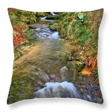 Moorland Stream Throw Pillow