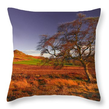 Moorland Tree North Yorkshire Throw Pillow