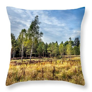 Wetlands In The Black Forest Throw Pillow