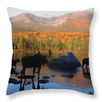 Moose Family Scenic Throw Pillow by Jane Axman
