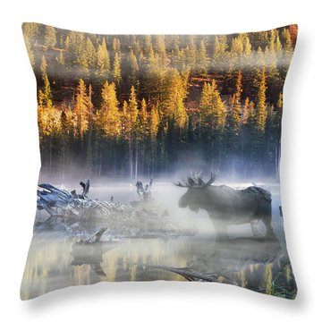 Moose Lake Throw Pillow