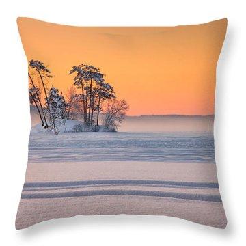 Moose Pond Winter Sunrise Throw Pillow
