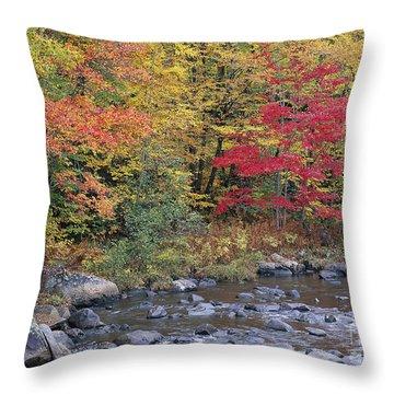 Moose River Autumn Throw Pillow by Alan L Graham