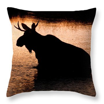 Moose Silhouette 3569   Throw Pillow by Brent L Ander