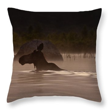 Moose Swim Throw Pillow