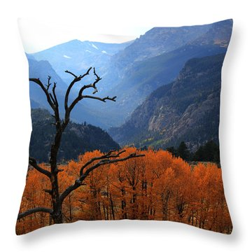 Moraine Park Throw Pillow