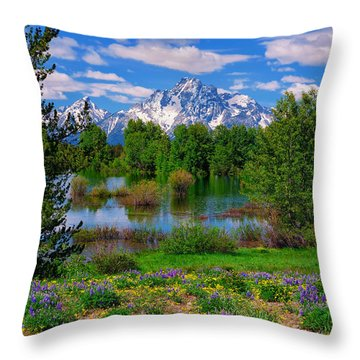 Throw Pillow featuring the photograph Moran From Pilgrim Creek by Greg Norrell
