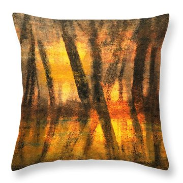 Labyrinth Of Evening Throw Pillow