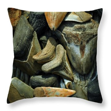 More Megalodon Teeth Throw Pillow