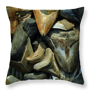 More Megalodon Teeth Throw Pillow by Rebecca Sherman