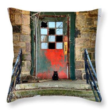 More Than Spirits Throw Pillow by Art Dingo